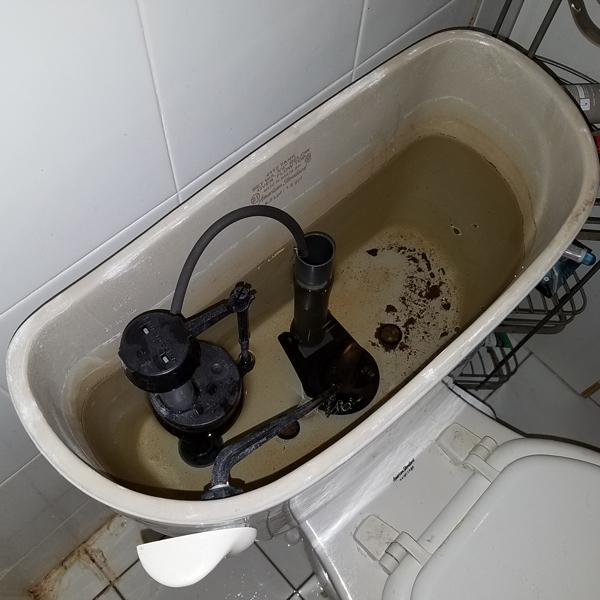 edsal-blvd-toilet.jpg